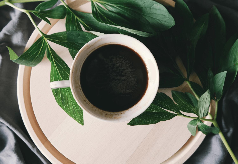 5 věcí, které byste měli vědět o kávě