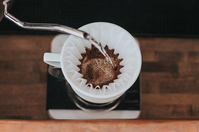 První fáze káva kvete